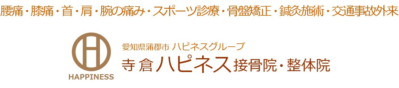 愛知県蒲郡市 ハピネスグループ 寺倉ハピネス接骨院